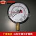 双针耐震压力表,双针耐震压力表介绍