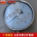 隔膜式耐震压力表,隔膜式耐震压力表介绍