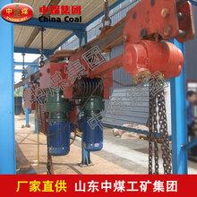 DDD30电动单轨吊车,DDD30电动单轨吊车参数图片