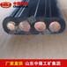 MSLYFVZ同軸電纜,電纜,MSLYFVZ型同軸電纜供應