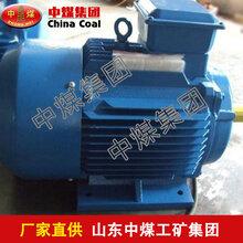 YBK2系列三相异步电机,三相异步电机,YBK2系列三相异步电机价格图片
