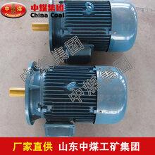 YB2D系列变极多速三相异步电机,三相异步电机,YB2D系列变极多速三相异步电机厂家图片