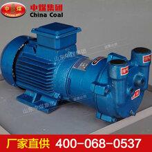 水环式真空泵,水环式真空泵使用特性