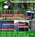 原装进口泰国三棵树、黄春发、民安天然乳胶原料中、马来西亚TiTi天然乳胶