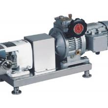 濟南州港流體專業生產TRA-006衛生級不銹鋼凸輪轉子泵圖片