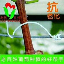 利民扎带0.7优质镀锌铁丝包环保PVC塑料,扁