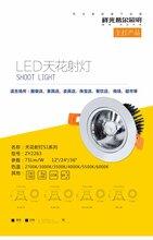 發光字和商業照明廠家