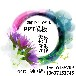 节日庆典PPT代做公司与制作价格紫泪公主工作室经验丰富
