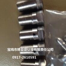 钛标准件钛螺丝,钛螺母,钛螺杆,钛非标标准件图片