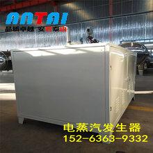 厂家直销(免检)电蒸汽发生器电锅炉全自动电热蒸汽发生器(可定制)