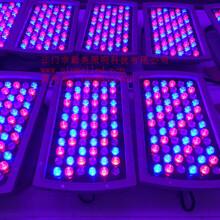 供应别墅外墙亮化72W七彩变色LED投射灯图片