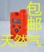 瑞安便攜式易體檢測儀持燃氣體泄漏報警儀