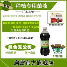 哪里可以买到改善土壤结构的叶菜种植em菌液呢图片