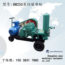 青海果洛班玛BW160注浆泵锚杆注浆泵价格图片