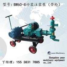 江苏扬州仪征BW150泵小型注浆泵系统原理图片