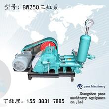 樁底樁側注漿福建寧德蕉城BW150三缸泵壓力圖片