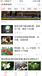 茶叶怎么推广凤凰app广告?