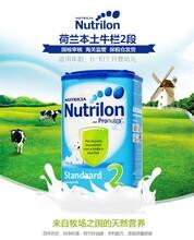直供港荷兰牛栏奶粉2段(6-10月)850g2罐装