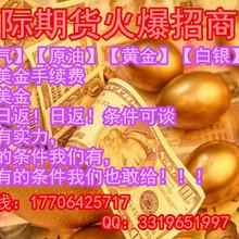 金融投资项目上海点金宝外盘国际期货招商国际期货技术服务