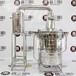 唐三镜家庭酿酒技术、家庭酿酒设备—自酿青梅酒