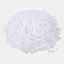 南箭牌抗菌消炎兽药氨苄西林钠可溶性粉