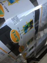 农作物种子标签二维码打码机