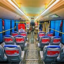 公交车内广告,公交车广告,公交车内看板广告