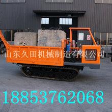 异性车泥路专用自卸车履带式工程修水利专用车
