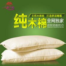天然木棉花枕芯