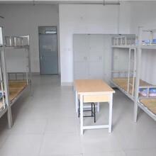 河南军鹏人力长期安置寒暑假兼职实习、顶岗就业实习、社会工