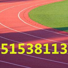 青岛全民健身跑道.橡胶跑道.塑胶跑道厂家图片