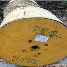 四川回收144芯光缆阿坝黑水县光缆免费上门回收供应光缆图片