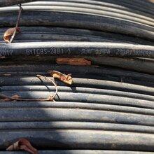 阿坝金川区免费上门回收24芯GYTS04光缆回收光模块图片