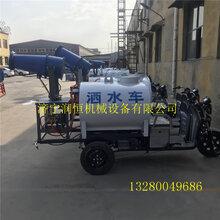 工程电动三轮喷雾洒水车绿化环保洒水雾炮车图片