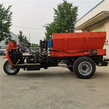 大容量柴油三轮撒粪车干粪湿粪有机肥自动扬粪车图片