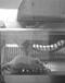淮北軟隆跑輪實驗系統小動物跑輪系統大鼠轉輪式跑步機
