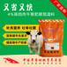刚买回来的牛怎么饲喂/牛饲料/牛饲料添加剂