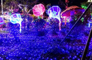 春节大型唯美灯光设计制作大型灯光秀图片