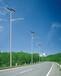 厂家批发定制30W农村太阳能路灯