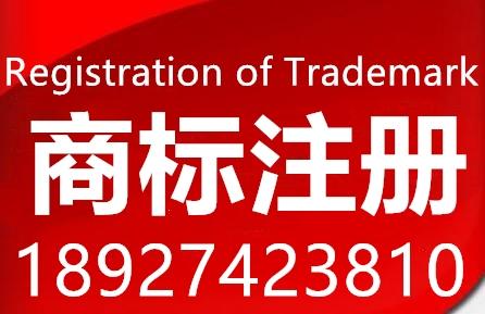 坪山商标注册公司电话,国内商标注册找大信知识产权专业检索