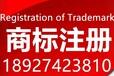 商标注册公司电话号码,在深圳注册商标首选大信知识产权专业检索