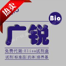 鸡硫酸类肝素HS试剂盒保存