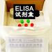 人αL艾杜糖苷酸酶分次實驗elisaIDUA樣本