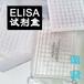 人套膜蛋白分次实验elisaiNV样本