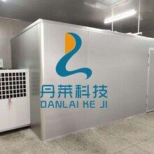 萝卜条烘干机,萝卜干烘干机,广州丹莱空气能热泵烘干机