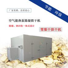 雪梨干空气能烘干机,水果烘干房,芒果干烘干箱厂家直销
