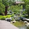 淄博景观设计案例滨州景观设计山体景观设计规划大景供