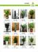 广州天河区植物租摆花木出租哪家绿化公司好