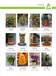广州天河区哪里有便宜的价格优惠的年桔朱砂桔卖送货上门