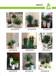 在广州萝岗科学城哪家绿化公司可以提供植物租摆租花花卉出租而且服务好